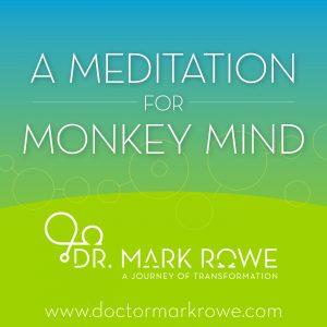 Meditation for Monkey Life